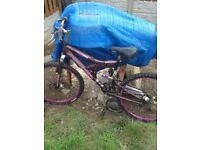 Girls /adult bike (FREE)