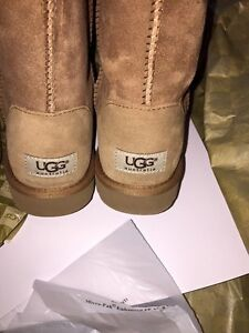 Tall Chestnut Classic Uggs