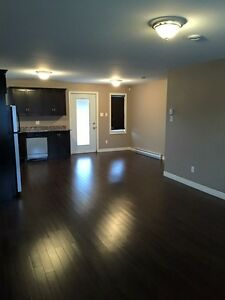 One bedroom above ground basement apartment in Paradise St. John's Newfoundland image 9