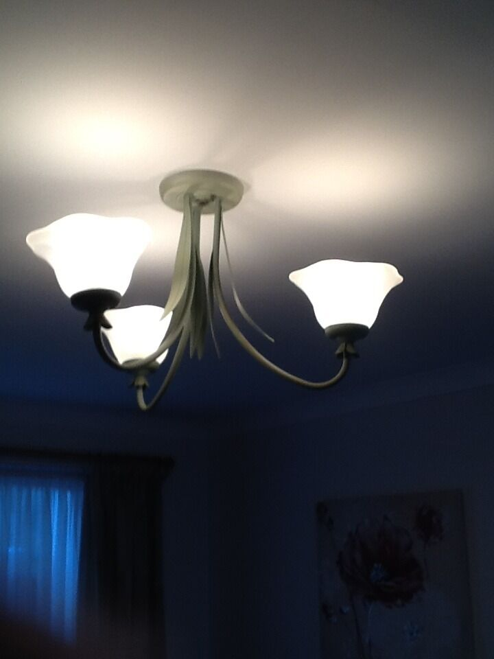 Three Bulb ceiling light
