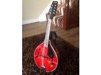 Electro acoustic mandolin