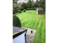 Garden Maintenance & Hedge cutting services