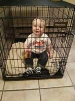 dog crate for large dogs,and puppy pen