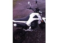 2013 HONDA MSX 125 LONG MOT LOW MILES MAY PX
