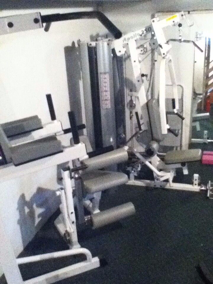 Photo Commercial Grade Home Gym Apollo 250 TuffStuff 2-station Mint Condition
