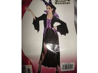 MALEFICENT STYLE EVIL QUEEN/WITCH OUTFIT SIZE 16/18 GREAT FOR A PARTY