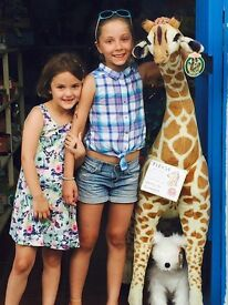 Looking for LIVE-IN AU PAIR - starting 22 December. Finchley, London
