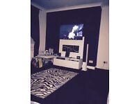X6 zebra print cushions and rug
