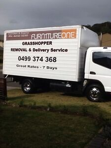 Grasshopper removals Albion Park Shellharbour Area Preview