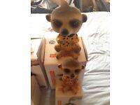 Meerkat money boxes