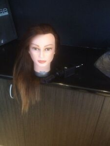 Hairdressing mannequin head and clamp New Farm Brisbane North East Preview