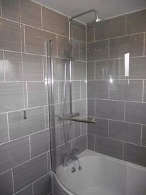 High quality multiscilled qualified bathroom fitter