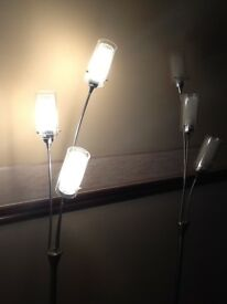 Floor standing halogen lights