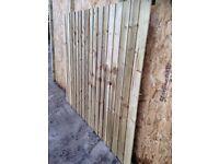 Fence Panels Tantalised