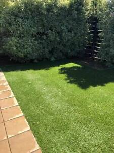 Synthetic grass and landscaping