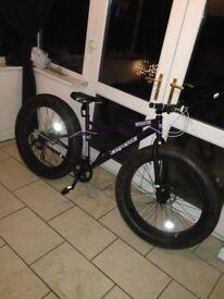 Coyote fatman bike