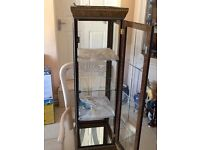 Small glass cabinet display with 3 glass shelfs and light on top