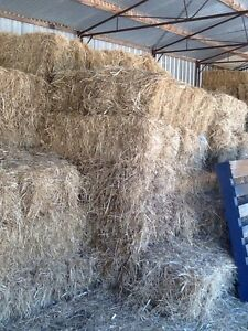 Meadow hay Myponga Yankalilla Area Preview