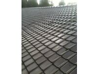Roofing and general building service free estimates !