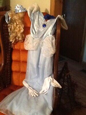Disney Cinderella Adult Dress Costume Size Medium 8-10 with wig free shipping - Adult Cinderella Dress