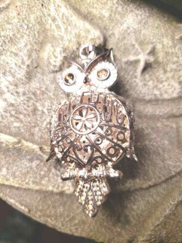 haunted metaphysical Blessed owl new beginnings protection Heirarchy peace
