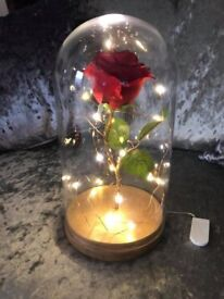Inspired Beauty and the Beast enchanted light up rose