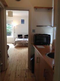 Chiswick W42LT - Large Charming Studio garden flat close to Turnham Green and Stamford Brook Tube