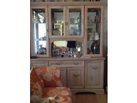 Display unit and tv cabinet