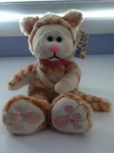 BEANIE KID - Ginger the Ginger Cat Bear Koongal Rockhampton City Preview