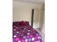 Lovely double room in Forest Hill 4 bed house