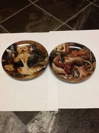 Collectable Dog and Kitten Plates