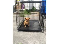 Large metal dog crate/cage