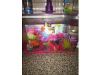 girls fish tank. with 3 wee cold water fish