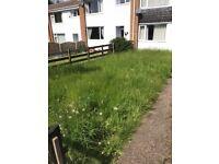 Nottingham Gardening Services / landscaping / garden work