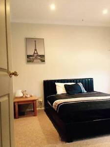 One Room Available for Backpacker/s from Europe. Unlimited WiFi Denistone Ryde Area Preview