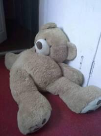 Giant Bear RRP £150