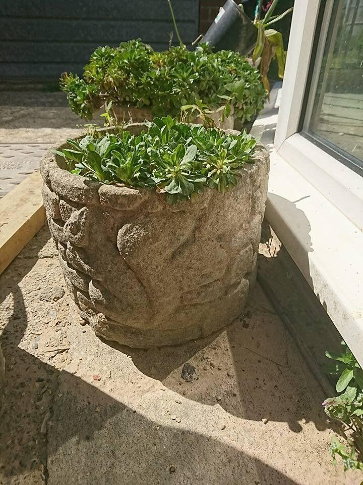 Garden Planters / Plant Pots   Troughs And Round Pots