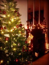 6ft B&Q Alpine Fir Christmas Tree artificial
