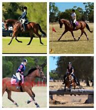 All rounder/lease Southern River Gosnells Area Preview