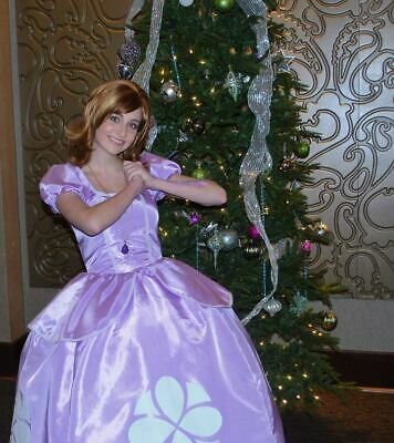 Sofia the First Dress Gown Costume, Adult or Teen - Your Size Busts 26