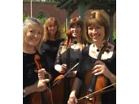 LooseStrings Quartet available for weddings, garden parties and other events