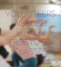 VOLUNTEERS IN EXCHANGE FOR FREE YOGA CLASSES!