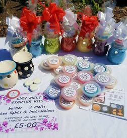 soy wax melts 100+ scents