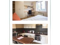 Student Accommodation for rent ASAP