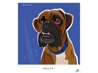 **Local artist would love to illustrate your pet. Personally illustrated & framed artwork***