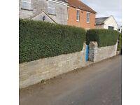 Greenacre Garden Maintenance - Hedge Trimming, Lawn Mowing, Garden Clearances.