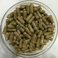 Deglycyrrhizinated Licorice (dgl) Extract Capsules, Liquorice, Stomach Lining - maple lifesciences - ebay.co.uk