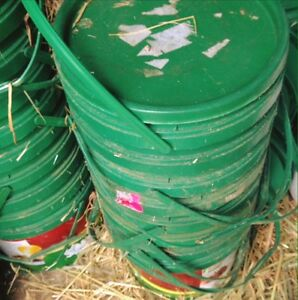 Buckets. Used for feed Brahma Lodge Salisbury Area Preview