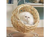 🐾😺 Brand New Natural Rattan Cat Egg Chair 🐾😺