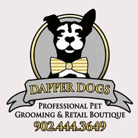 Professional Dog Groomer